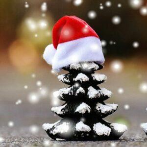 Mais natal…..
