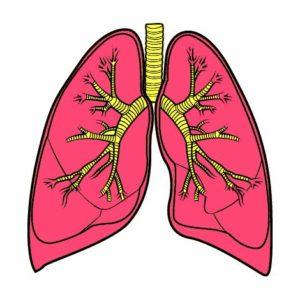 Asma, bronquite e bronquiolite. Qual a diferença?